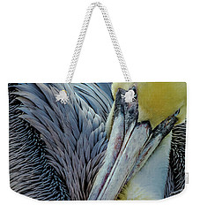 Weekender Tote Bag featuring the photograph Brown Pelican by Bill Gallagher