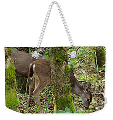 Weekender Tote Bag featuring the photograph Brunching by I'ina Van Lawick