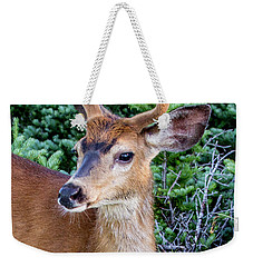 Buck In Velvet Weekender Tote Bag
