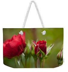 Bud Bloom Blossom Weekender Tote Bag by Mike Reid