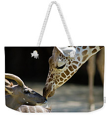 Weekender Tote Bag featuring the photograph Buddies by Steve Stuller