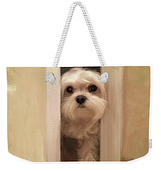 Weekender Tote Bag featuring the photograph Hello by Lois Bryan
