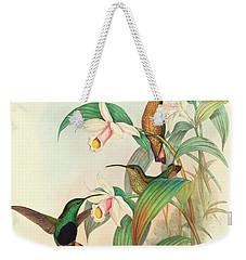 Buff Tailed Velvet Breast Weekender Tote Bag by John Gould