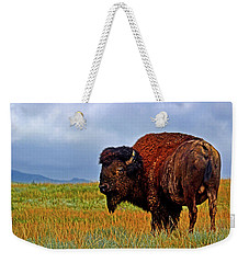 Weekender Tote Bag featuring the photograph Buffalo 006 by George Bostian