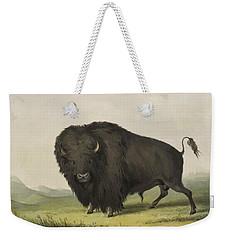 Buffalo Bull Grazing 1845 Weekender Tote Bag