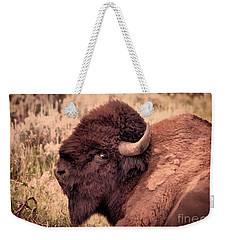 Weekender Tote Bag featuring the photograph Buffalo Eye On You by Janice Rae Pariza