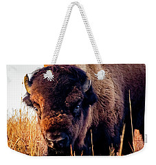 Buffalo Face Weekender Tote Bag by Jay Stockhaus