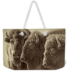 Weekender Tote Bag featuring the photograph Trio American Bison Sepia Brown by Jennie Marie Schell
