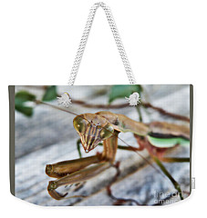 Bug Eyed  Weekender Tote Bag by Christy Ricafrente