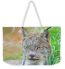 Weekender Tote Bag featuring the photograph Built In Hearing Aid.. by Nina Stavlund