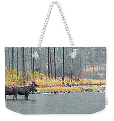 Bull And Cow Moose In East Rosebud Lake Montana Weekender Tote Bag
