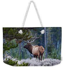 Bull Elk In Forest Weekender Tote Bag