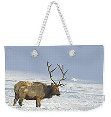Bull Elk In Snow Weekender Tote Bag