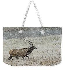 Bull Elk With Snow Weekender Tote Bag
