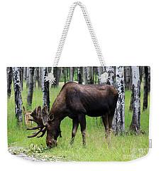 Bull Moose In The Woods  Weekender Tote Bag