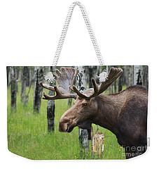 Bull Moose Portrait Weekender Tote Bag