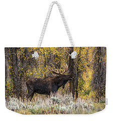 Weekender Tote Bag featuring the photograph Bull Moose Talk by Yeates Photography