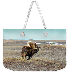 Bull Musk Ox Weekender Tote Bag by Anthony Jones