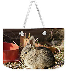 Bunny In The Garden Weekender Tote Bag