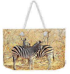 Burchells Zebras Weekender Tote Bag by Betty-Anne McDonald