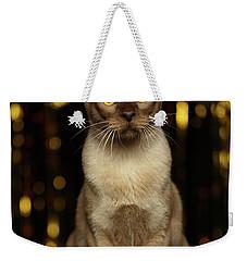Burmese Cat Sits On New Year Background Weekender Tote Bag
