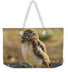 Burrowing Owl #6 Weekender Tote Bag