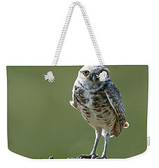 Weekender Tote Bag featuring the photograph Burrowing Owl by Gary Lengyel