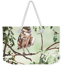 Burrowing Owl In A Tree Weekender Tote Bag