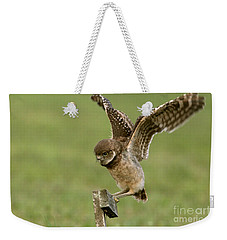 Burrowing Owl - Learning To Fly Weekender Tote Bag by Meg Rousher