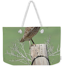 Burrowing Owl On Post Weekender Tote Bag