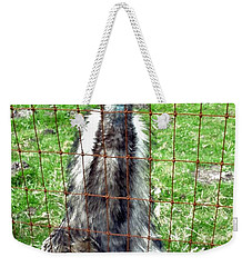 Weekender Tote Bag featuring the photograph But I'm Innocent by Sadie Reneau
