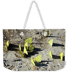 Weekender Tote Bag featuring the photograph Butterflies by Melinda Blackman
