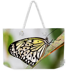 Butterfly #1945 Weekender Tote Bag by Chuck Flewelling