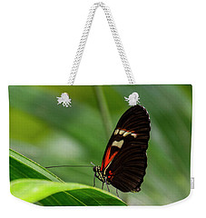 Butterfly #1946 Weekender Tote Bag by Chuck Flewelling