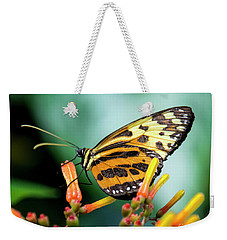 Butterfly #1957 Weekender Tote Bag by Chuck Flewelling