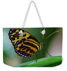 Butterfly #1963 Weekender Tote Bag by Chuck Flewelling