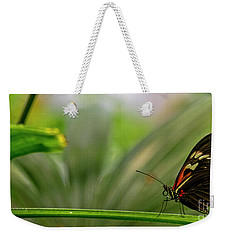Butterfly #1992 Weekender Tote Bag by Chuck Flewelling