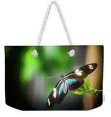 Weekender Tote Bag featuring the photograph Butterfly At Cleveland Botanical Gardens by Richard Goldman