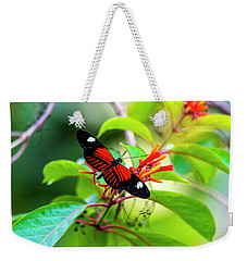 Weekender Tote Bag featuring the photograph Butterfly  by David Morefield