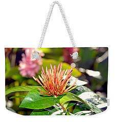 Butterfly Snack Weekender Tote Bag
