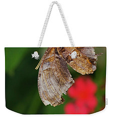 Butterfly Surrounded  By Red Weekender Tote Bag