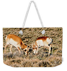 Butting Heads Weekender Tote Bag