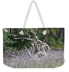 Weekender Tote Bag featuring the photograph Cabbage Palms And Driftwood by Carol  Bradley