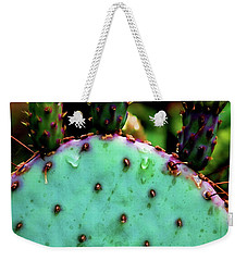Weekender Tote Bag featuring the photograph Cacti And Friends by Jessica Manelis