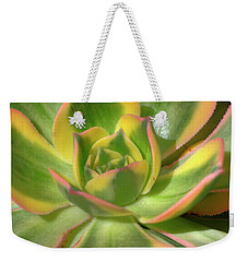 Weekender Tote Bag featuring the photograph Cactus 4 by Jim and Emily Bush