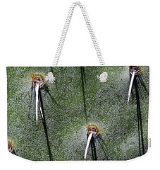 Cactus Abstract 11 Weekender Tote Bag by Mary Bedy