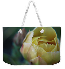 Weekender Tote Bag featuring the photograph Cactus Beauty by Amee Cave