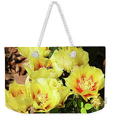 Weekender Tote Bag featuring the photograph Cactus Flowers And Friend by Sheila Brown