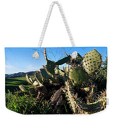 Weekender Tote Bag featuring the photograph Cactus In The Mountains by Matt Harang