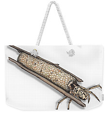 Caddisfly Limnephilidae Anabolia Nervosea Larva Nymph -  Weekender Tote Bag